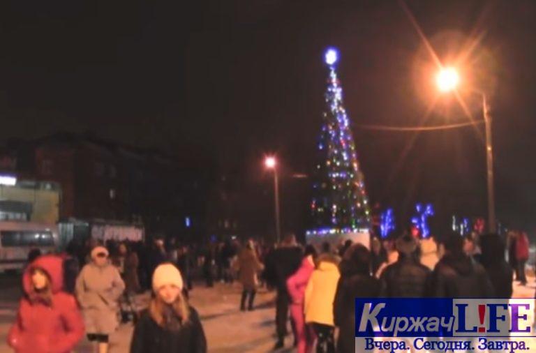 Полиция призывает граждан быть бдительными в новогодние праздники